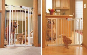 Carlson Baby Gate With Pet Door Extra Tall vs Extra Wide
