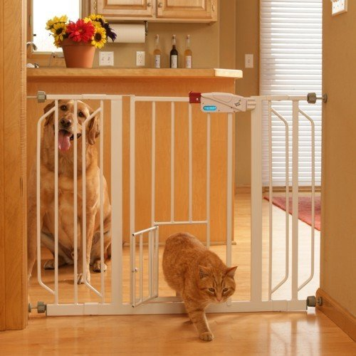 Finding The Perfect Baby Gate With Pet Door